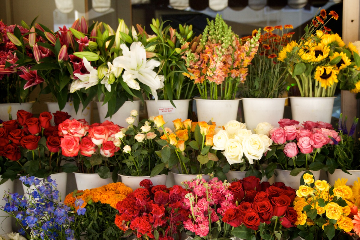 Flower Shop in SF | Karina Louise Photography